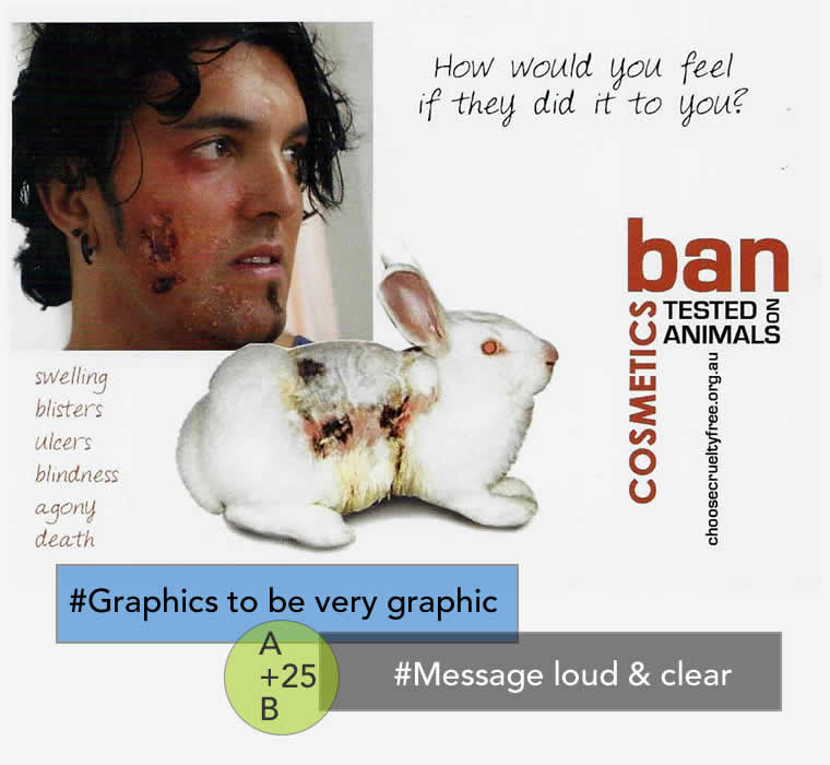 Web Design - Choose Cruelty Free